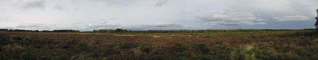 The 'old' battlefield - Culloden!