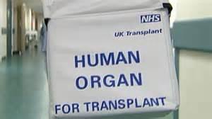 humanorgan